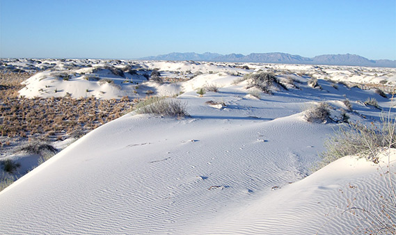 dunes-edge